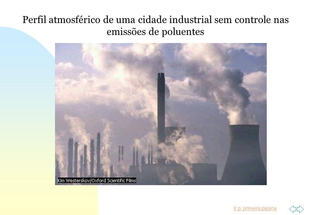 Ir p/ primeira página Perfil atmosférico de uma cidade industrial sem controle nas emissões de poluentes