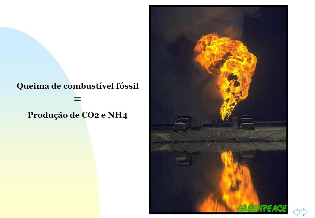 Ir p/ primeira página Queima de combustível fóssil = Produção de CO2 e NH4