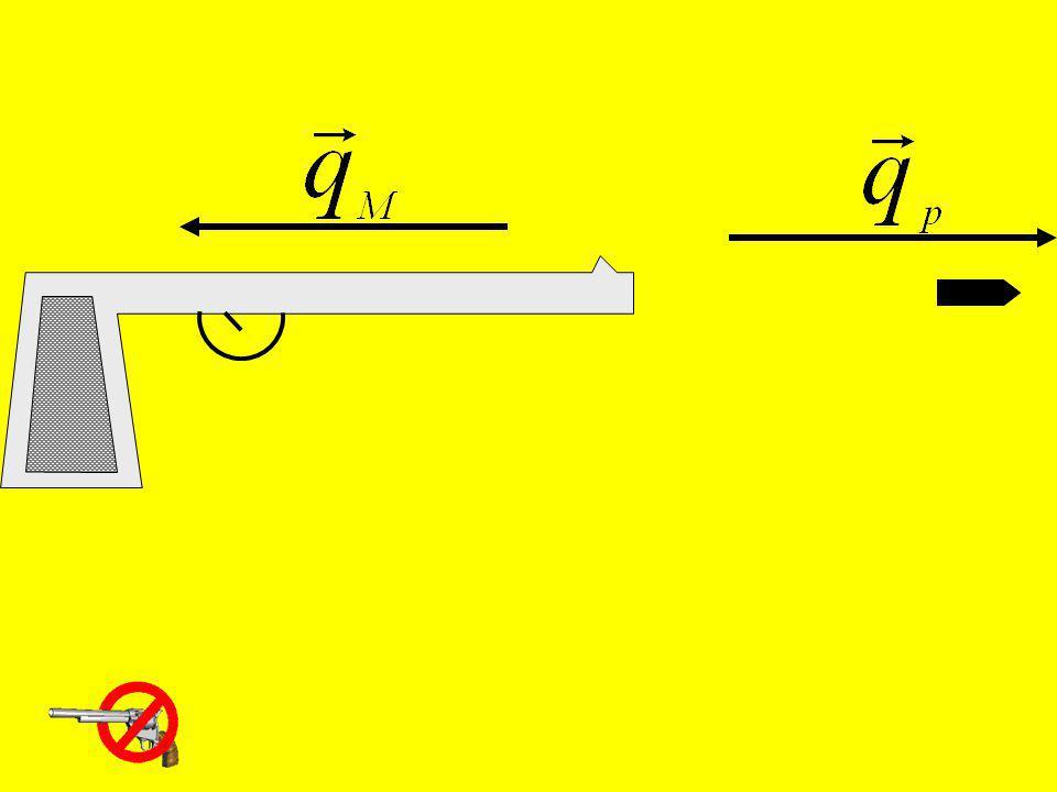 Lição Fazer RESUMO.Livro: Estabelecimento do conceito de quantidade de movimento (ler pg.