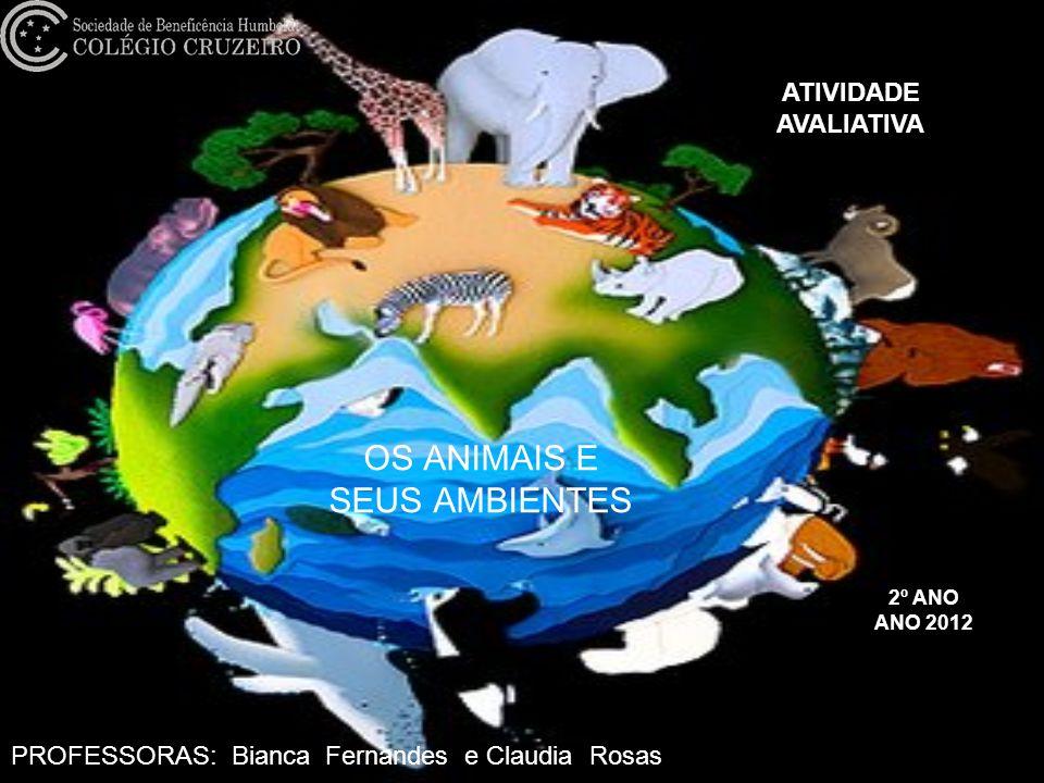 OS ANIMAIS E SEUS AMBIENTES 2º ANO ANO 2012 ATIVIDADE AVALIATIVA PROFESSORAS: Bianca Fernandes e Claudia Rosas