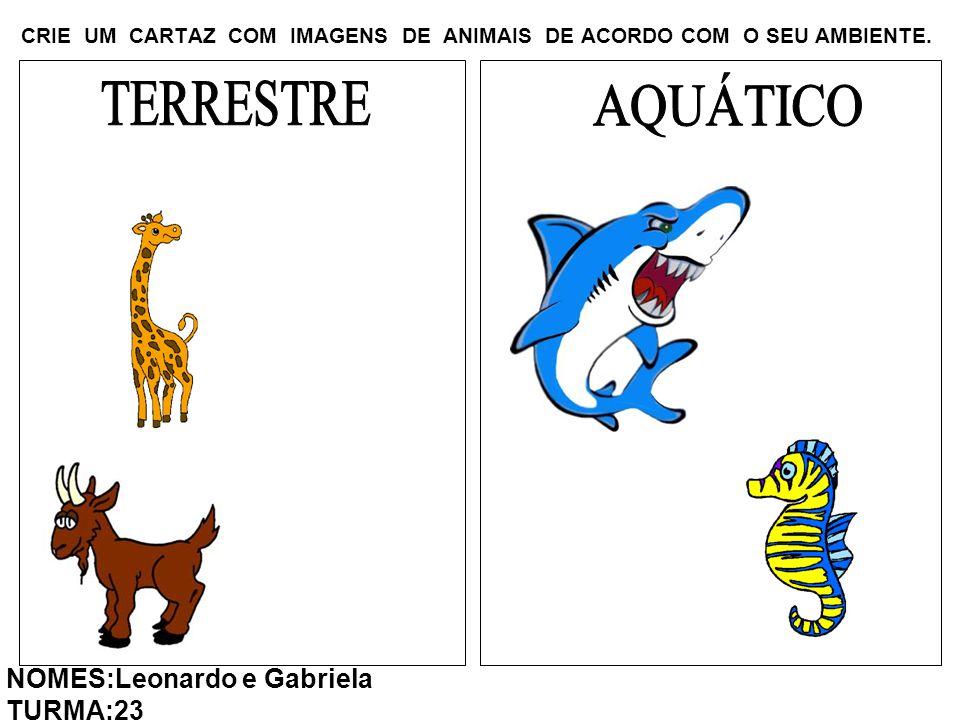 CRIE UM CARTAZ COM IMAGENS DE ANIMAIS DE ACORDO COM O SEU AMBIENTE. NOMES:Leonardo e Gabriela TURMA:23