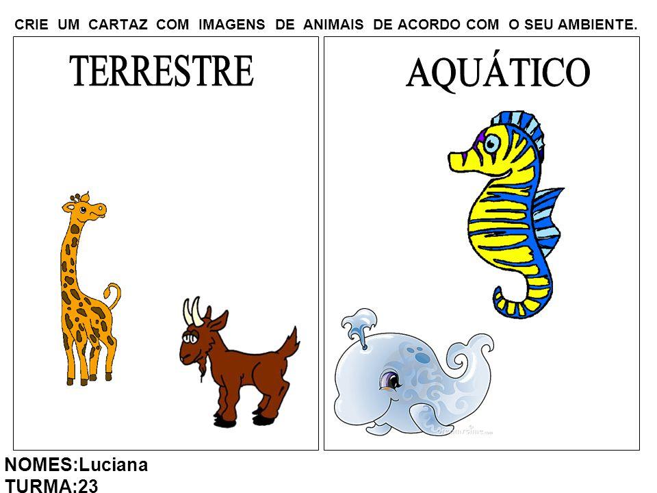 CRIE UM CARTAZ COM IMAGENS DE ANIMAIS DE ACORDO COM O SEU AMBIENTE. NOMES:Luciana TURMA:23