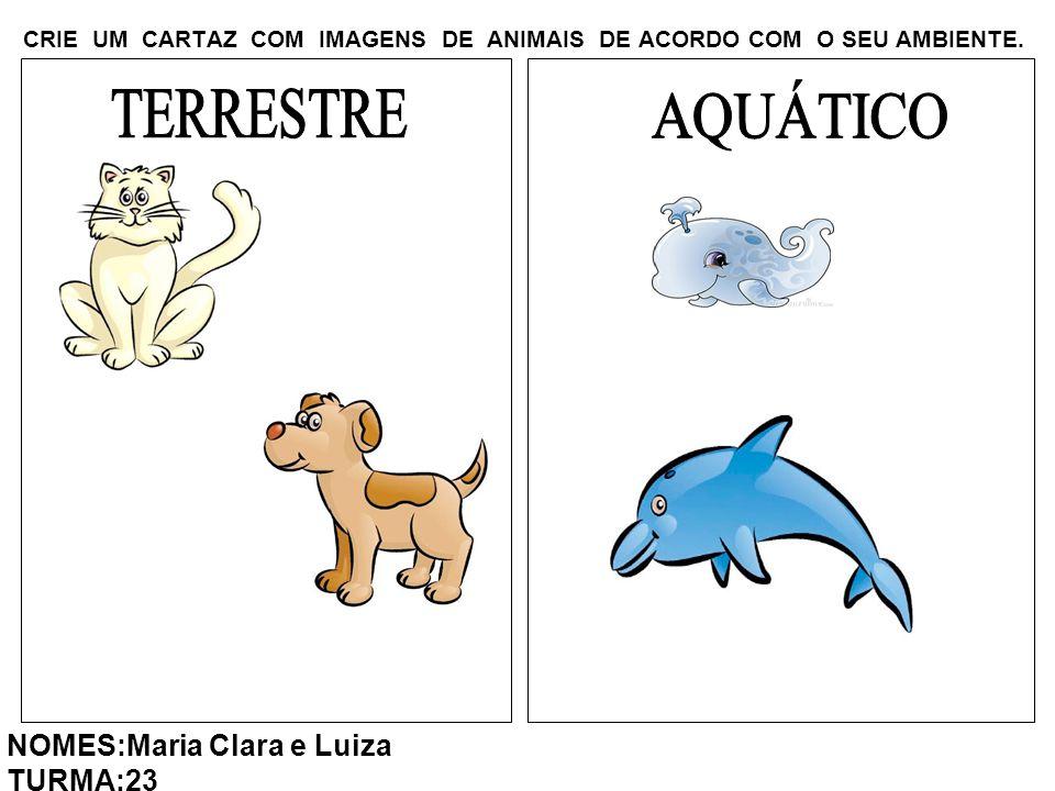 CRIE UM CARTAZ COM IMAGENS DE ANIMAIS DE ACORDO COM O SEU AMBIENTE. NOMES:Maria Clara e Luiza TURMA:23