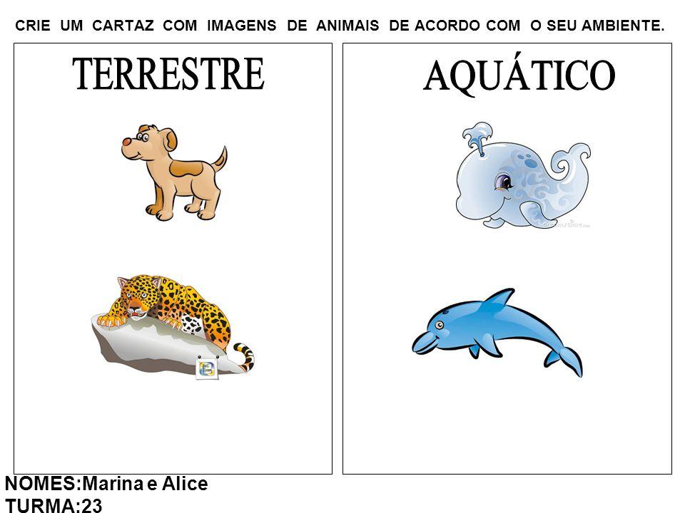 CRIE UM CARTAZ COM IMAGENS DE ANIMAIS DE ACORDO COM O SEU AMBIENTE. NOMES:Marina e Alice TURMA:23