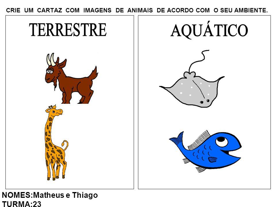 CRIE UM CARTAZ COM IMAGENS DE ANIMAIS DE ACORDO COM O SEU AMBIENTE. NOMES:Matheus e Thiago TURMA:23