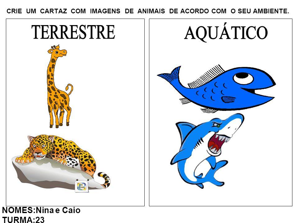 CRIE UM CARTAZ COM IMAGENS DE ANIMAIS DE ACORDO COM O SEU AMBIENTE. NOMES:Nina e Caio TURMA:23