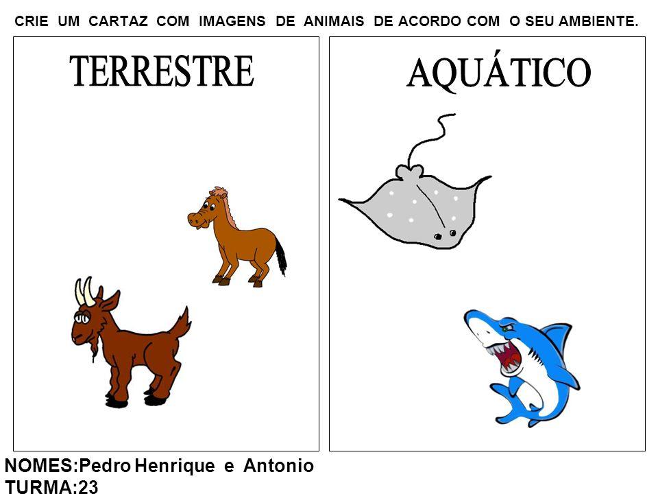 CRIE UM CARTAZ COM IMAGENS DE ANIMAIS DE ACORDO COM O SEU AMBIENTE. NOMES:Pedro Henrique e Antonio TURMA:23