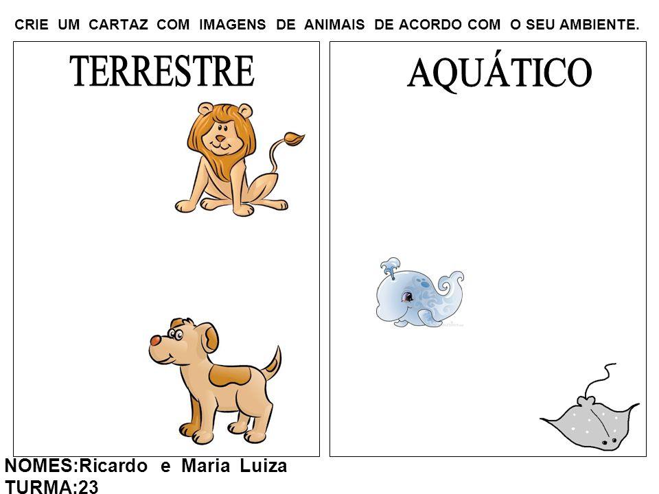 CRIE UM CARTAZ COM IMAGENS DE ANIMAIS DE ACORDO COM O SEU AMBIENTE. NOMES:Ricardo e Maria Luiza TURMA:23
