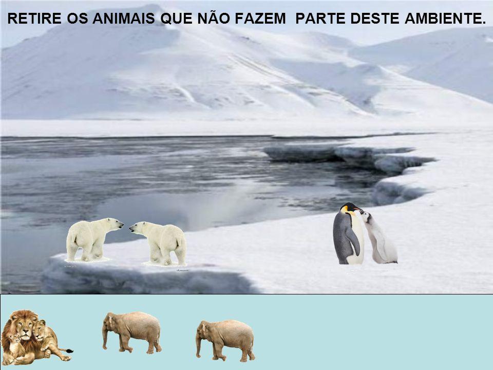 CRIE UM CARTAZ COM IMAGENS DE ANIMAIS DE ACORDO COM O SEU AMBIENTE. NOMES:Miguel e Nicole TURMA:23