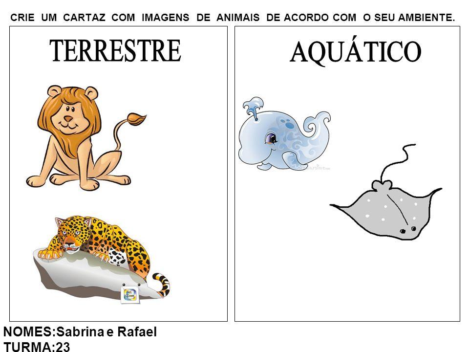 CRIE UM CARTAZ COM IMAGENS DE ANIMAIS DE ACORDO COM O SEU AMBIENTE. NOMES:Sabrina e Rafael TURMA:23
