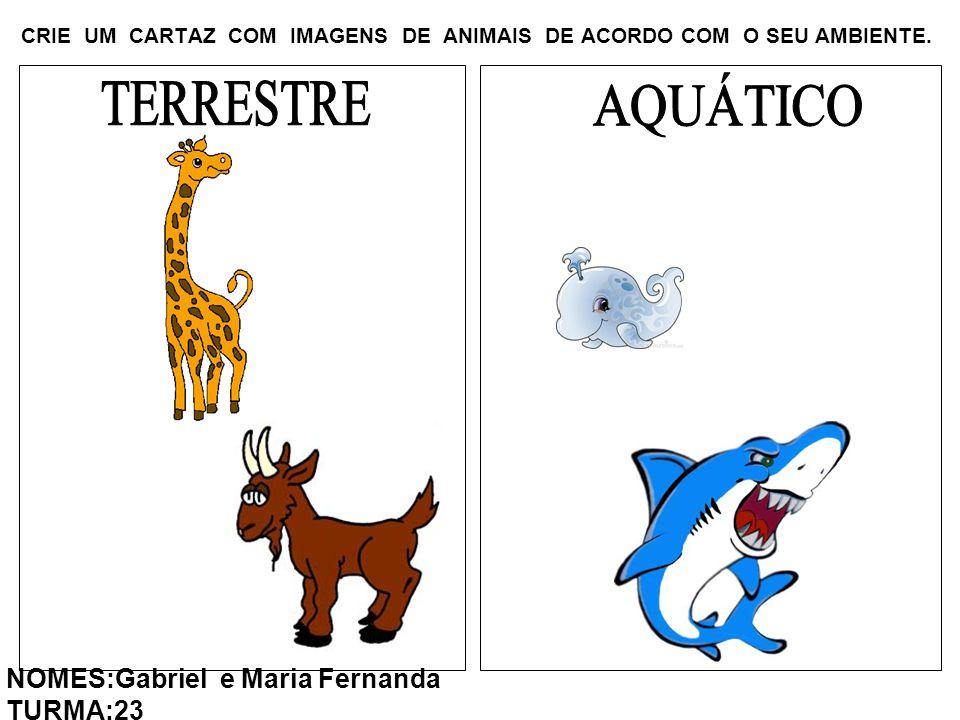 CRIE UM CARTAZ COM IMAGENS DE ANIMAIS DE ACORDO COM O SEU AMBIENTE. NOMES:Gabriel e Maria Fernanda TURMA:23
