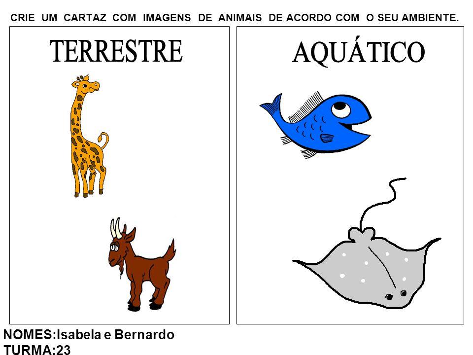 CRIE UM CARTAZ COM IMAGENS DE ANIMAIS DE ACORDO COM O SEU AMBIENTE. NOMES:Isabela e Bernardo TURMA:23
