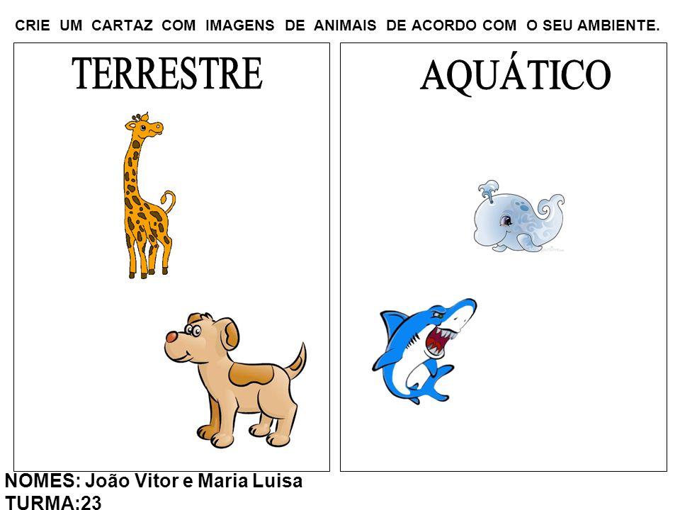 CRIE UM CARTAZ COM IMAGENS DE ANIMAIS DE ACORDO COM O SEU AMBIENTE. NOMES: João Vitor e Maria Luisa TURMA:23