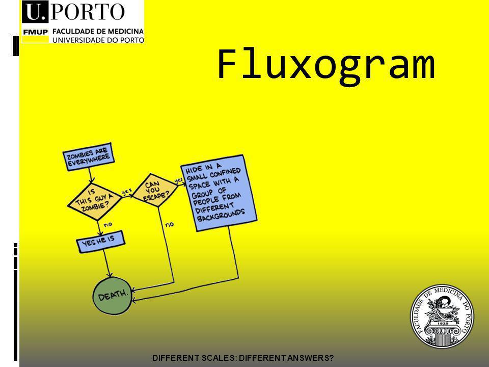DIFFERENT SCALES: DIFFERENT ANSWERS? Fluxogram