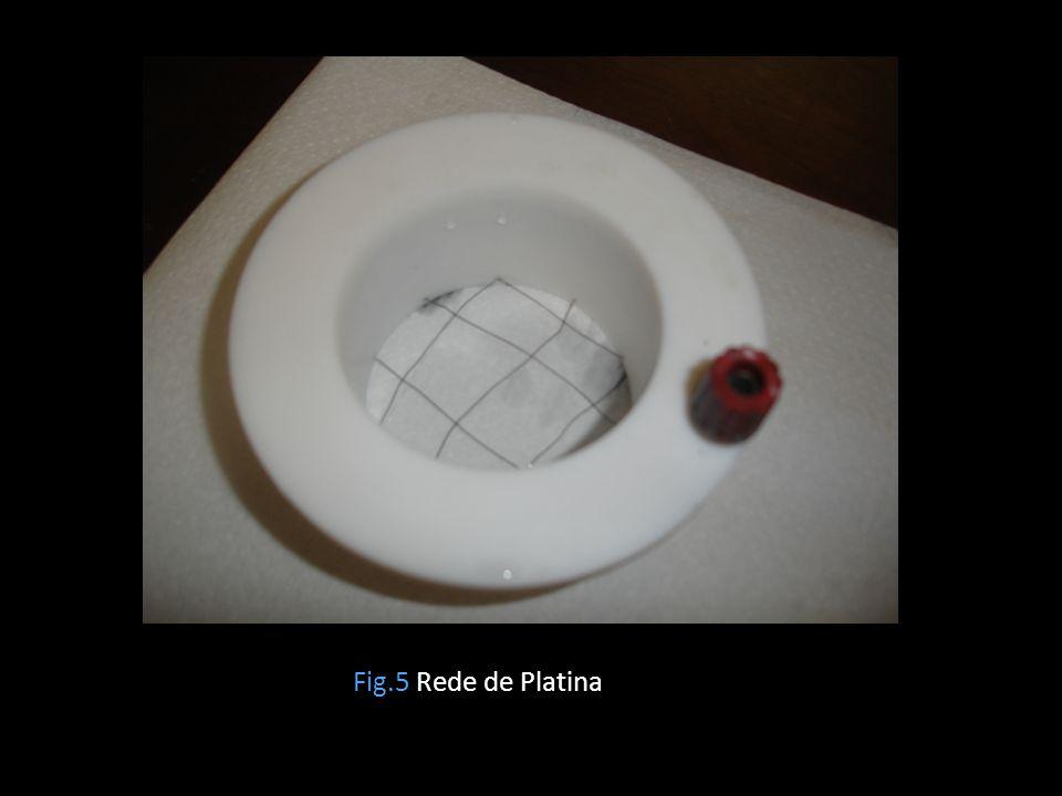 Fig.5 Rede de Platina