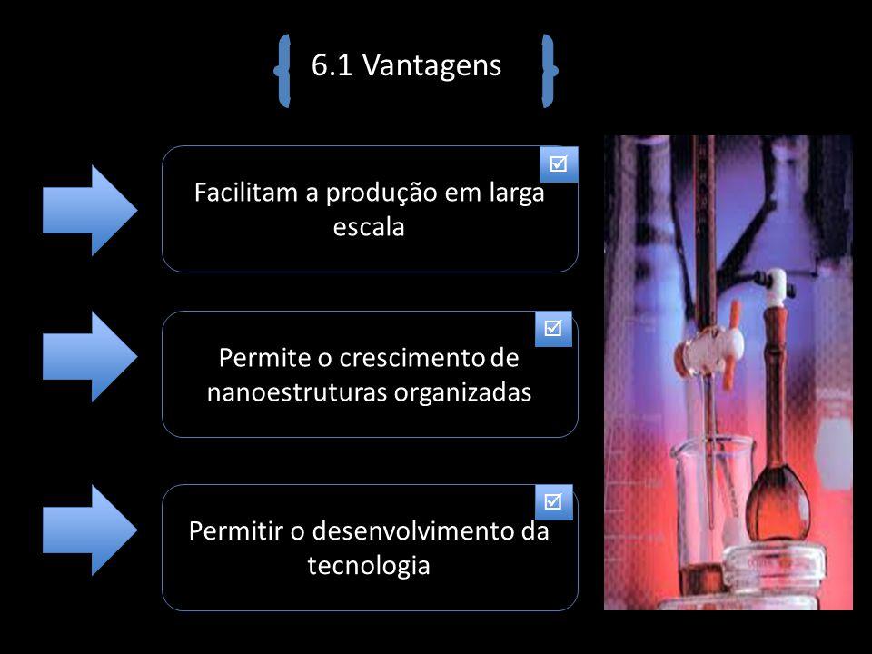 6.1 Vantagens Facilitam a produção em larga escala Permite o crescimento de nanoestruturas organizadas Permitir o desenvolvimento da tecnologia