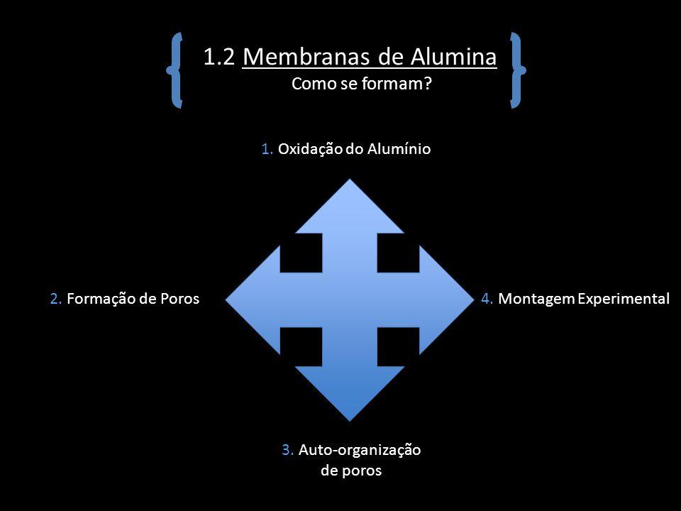 1.2 Membranas de Alumina Como se formam? 1. Oxidação do Alumínio 2. Formação de Poros 3. Auto-organização de poros 4. Montagem Experimental