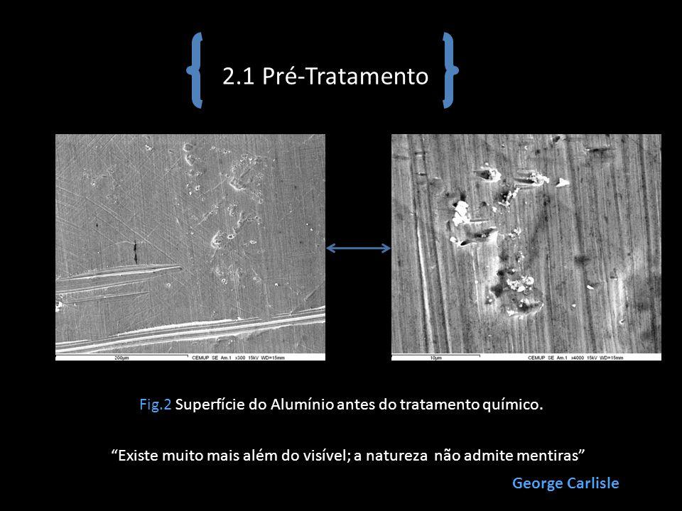 2.1 Pré-Tratamento Fig.2 Superfície do Alumínio antes do tratamento químico. Existe muito mais além do visível; a natureza não admite mentiras George