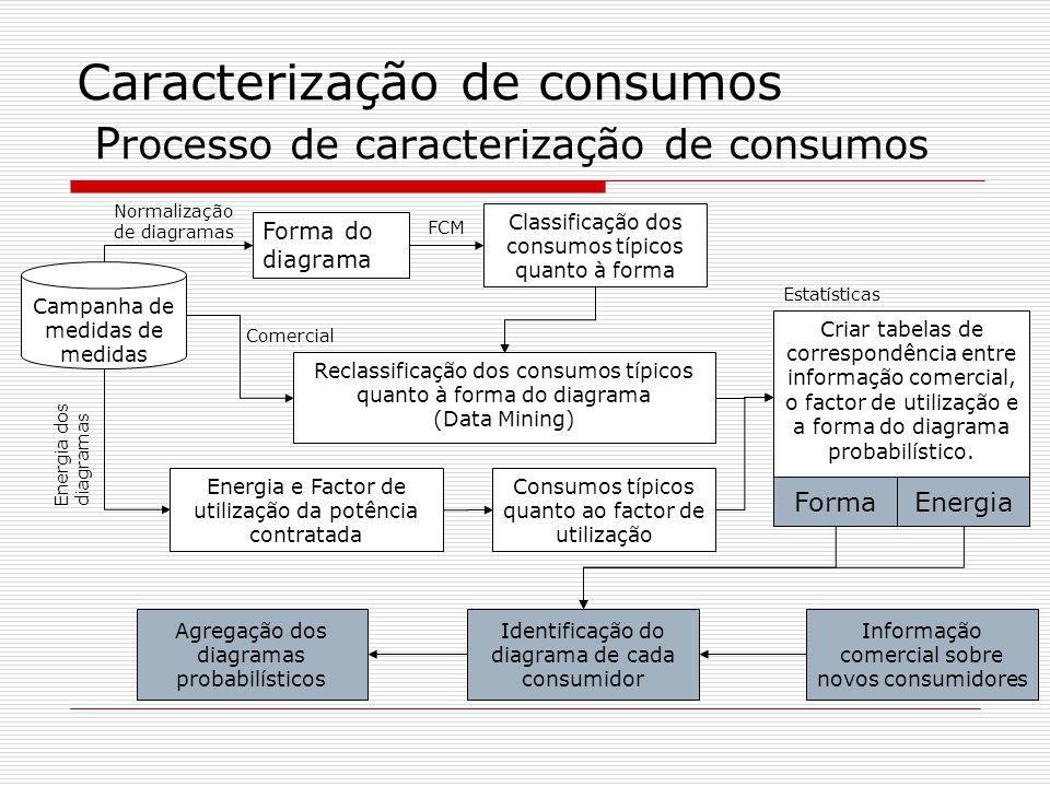 Caracterização de consumos P rocesso de caracterização de consumos Campanha de medidas de medidas Forma do diagrama Energia e Factor de utilização da