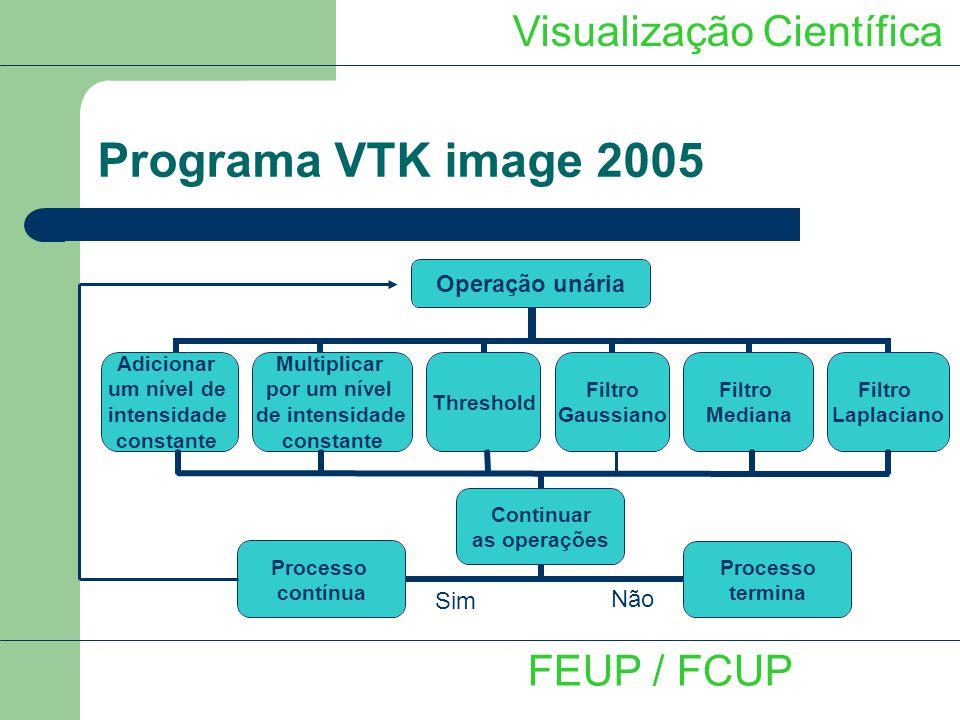 Não Programa VTK image 2005 Visualização Científica FEUP / FCUP Sim