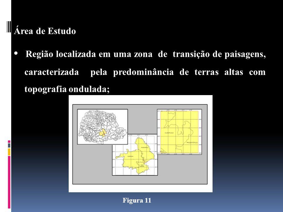 Área de Estudo Região localizada em uma zona de transição de paisagens, caracterizada pela predominância de terras altas com topografia ondulada; Figura 11
