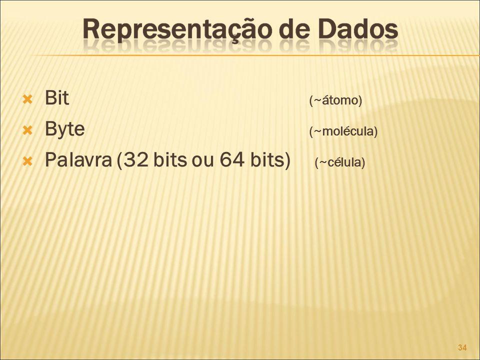 Bit (~átomo) Byte (~molécula) Palavra (32 bits ou 64 bits) (~célula) 34