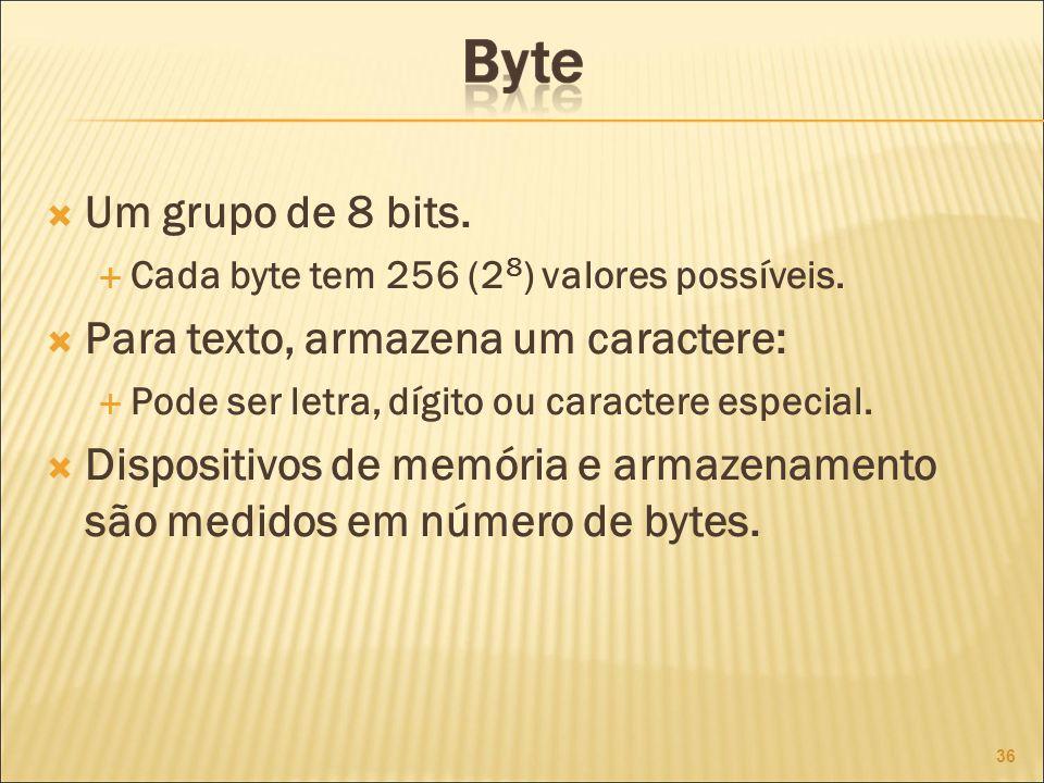 Um grupo de 8 bits.Cada byte tem 256 (2 8 ) valores possíveis.