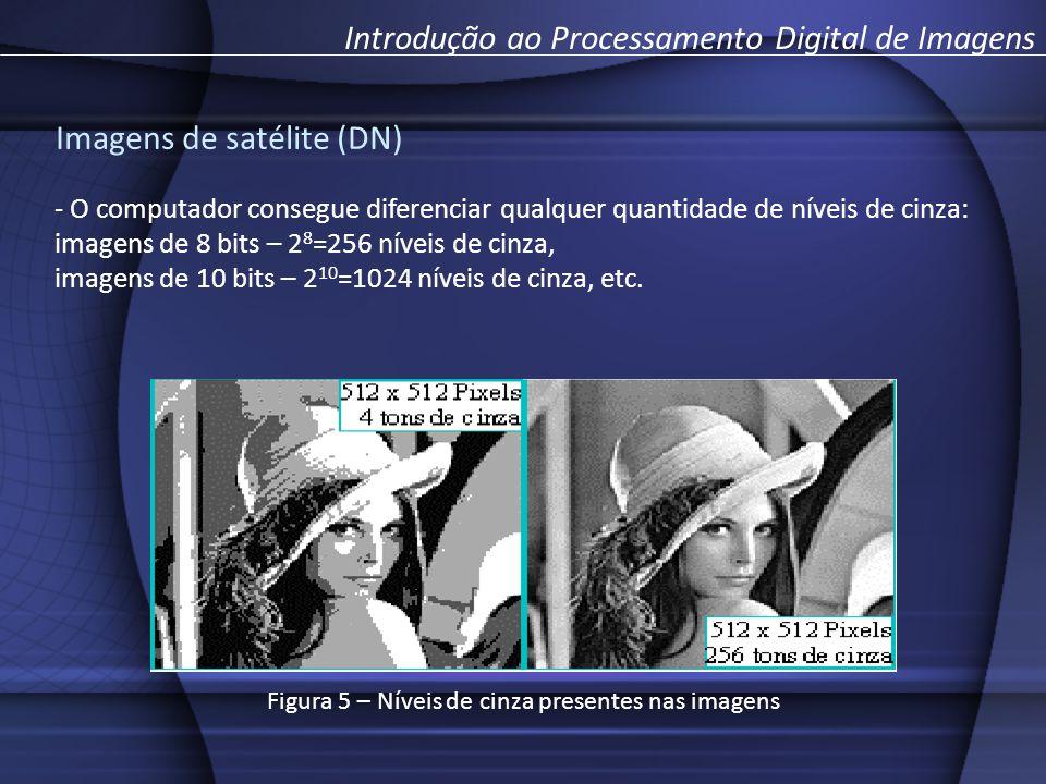 - O computador consegue diferenciar qualquer quantidade de níveis de cinza: imagens de 8 bits – 2 8 =256 níveis de cinza, imagens de 10 bits – 2 10 =1024 níveis de cinza, etc.