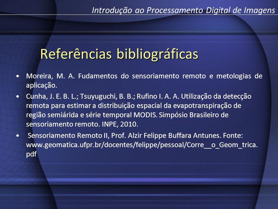 Referências bibliográficas Moreira, M. A. Fudamentos do sensoriamento remoto e metologias de aplicação. Cunha, J. E. B. L.; Tsuyuguchi, B. B.; Rufino