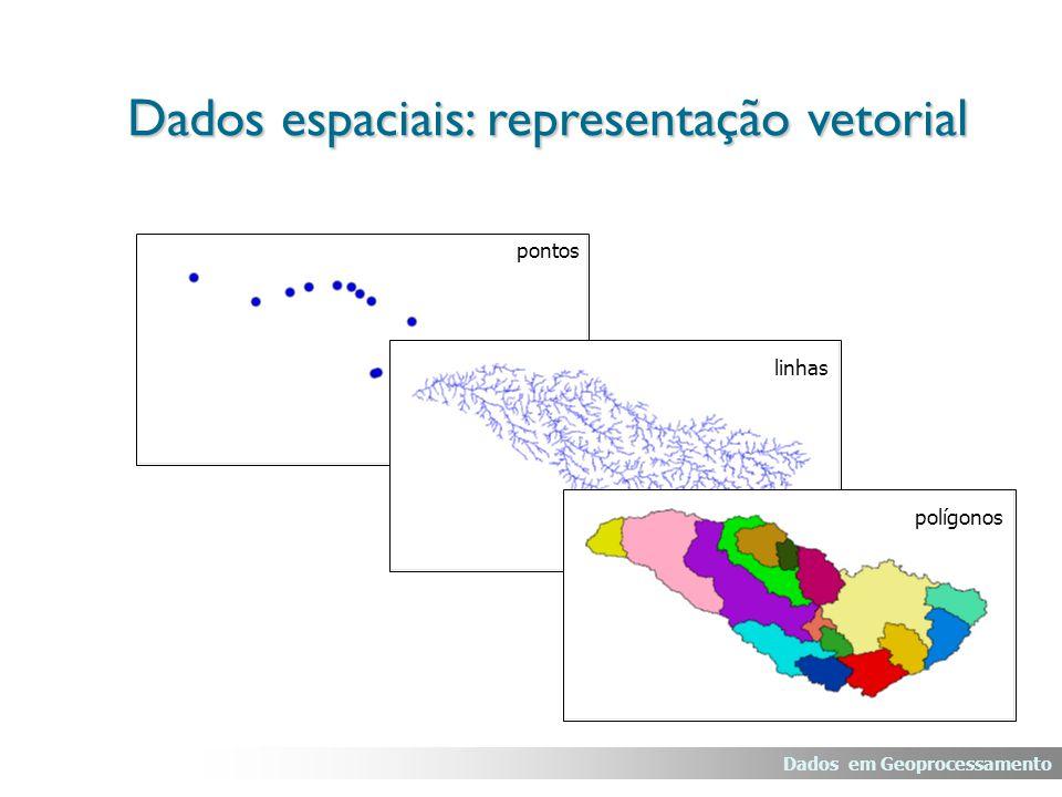 Redes As informações gráficas são armazenadas em coordenadas vetoriais, com topologia arco-nó; Este tipo de dado é muito utilizado em serviços de utilidade pública, como água, luz, telefone, redes de drenagem (bacias hidrográficas) e rodovias.