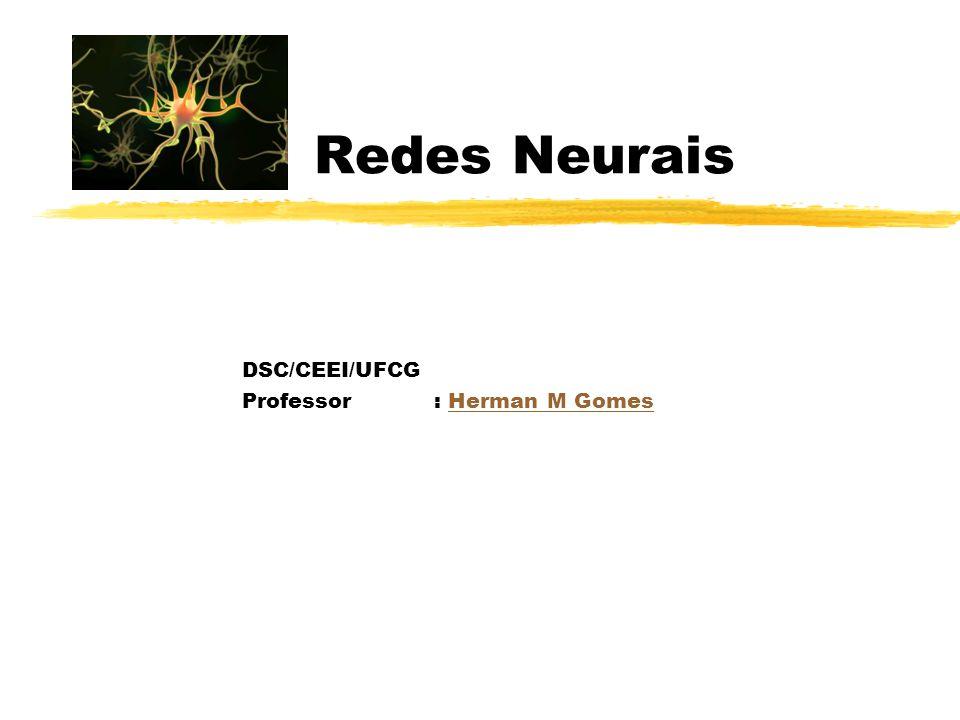 Redes Neurais DSC/CEEI/UFCG Professor: Herman M GomesHerman M Gomes