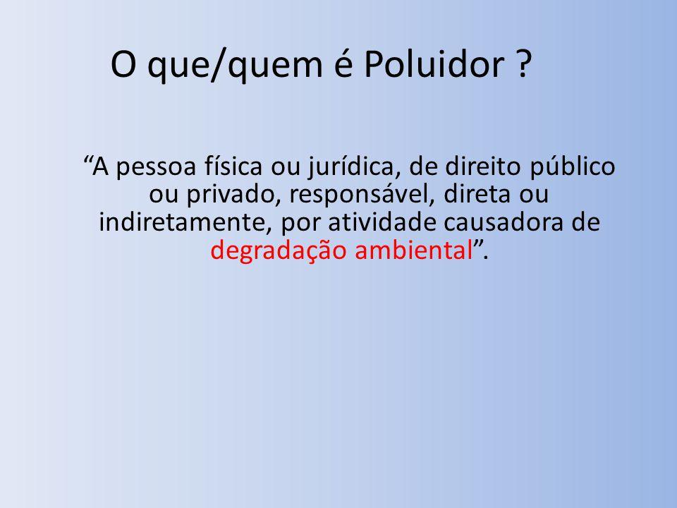 O que/quem é Poluidor .