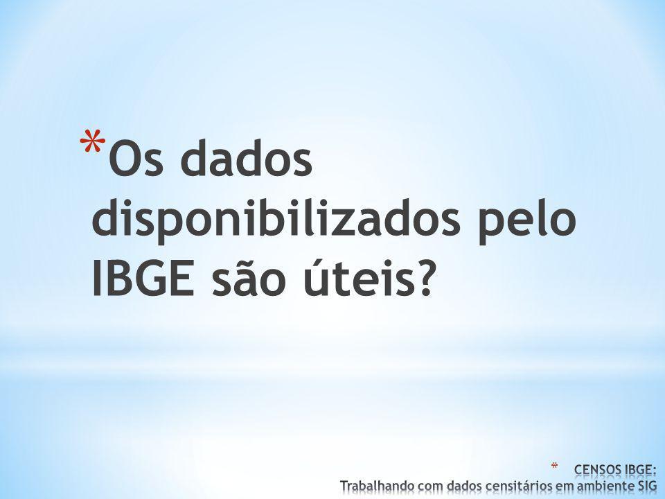 * Os dados disponibilizados pelo IBGE são úteis?