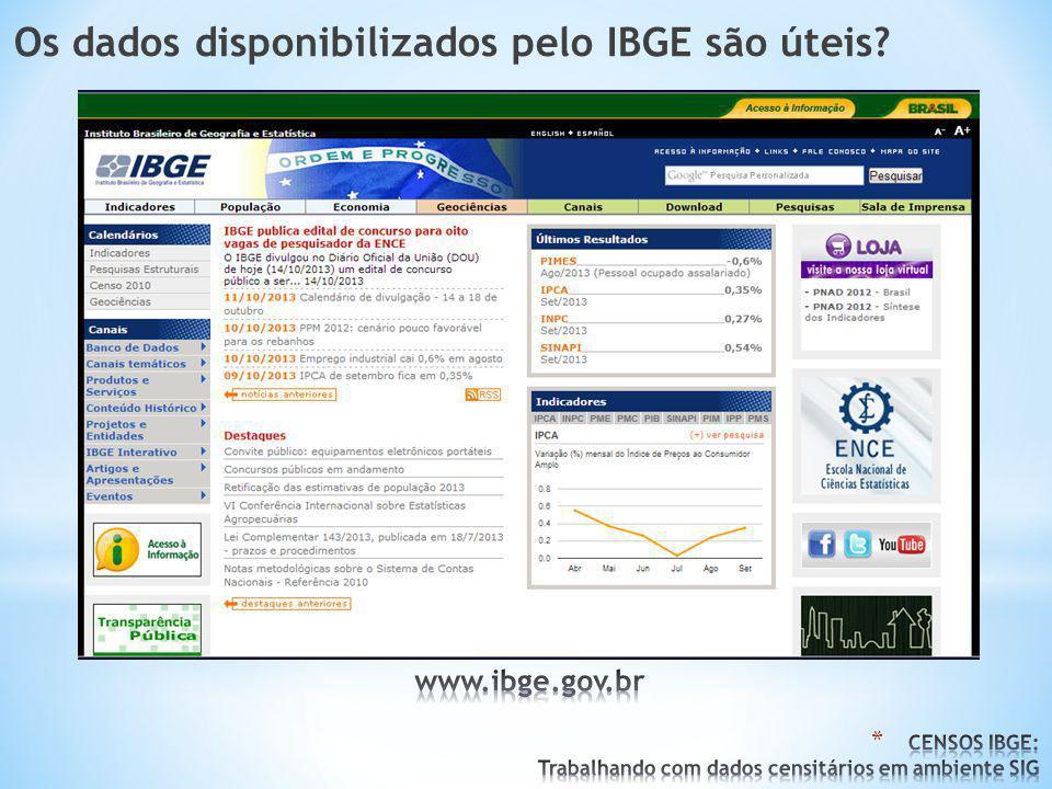 Os dados disponibilizados pelo IBGE são úteis?