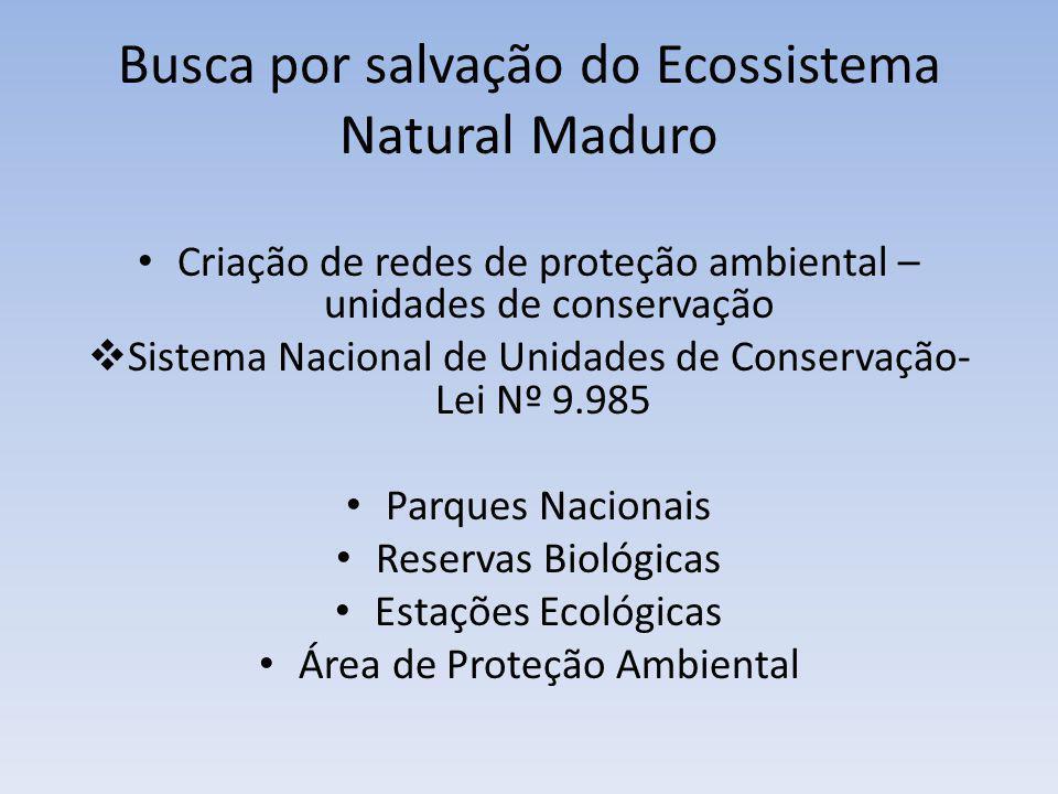 Busca por salvação do Ecossistema Natural Maduro Criação de redes de proteção ambiental – unidades de conservação Sistema Nacional de Unidades de Cons