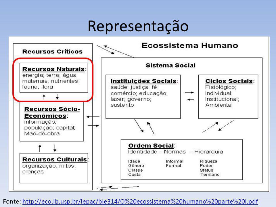 Representação Fonte: http://eco.ib.usp.br/lepac/bie314/O%20ecossistema%20humano%20parte%20I.pdfhttp://eco.ib.usp.br/lepac/bie314/O%20ecossistema%20hum