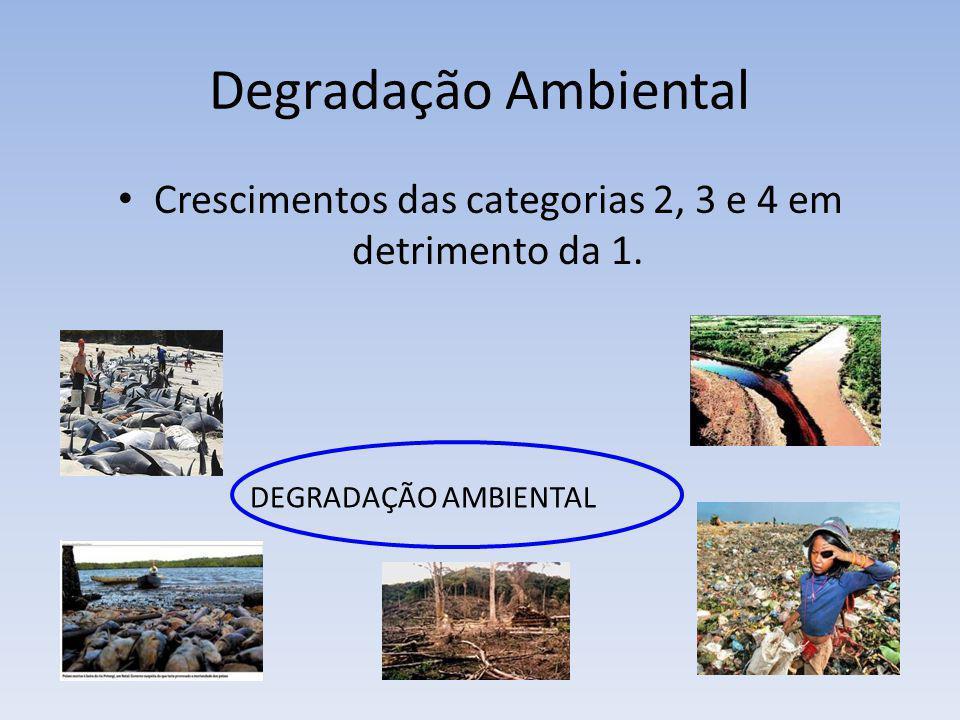 Degradação Ambiental Crescimentos das categorias 2, 3 e 4 em detrimento da 1. DEGRADAÇÃO AMBIENTAL