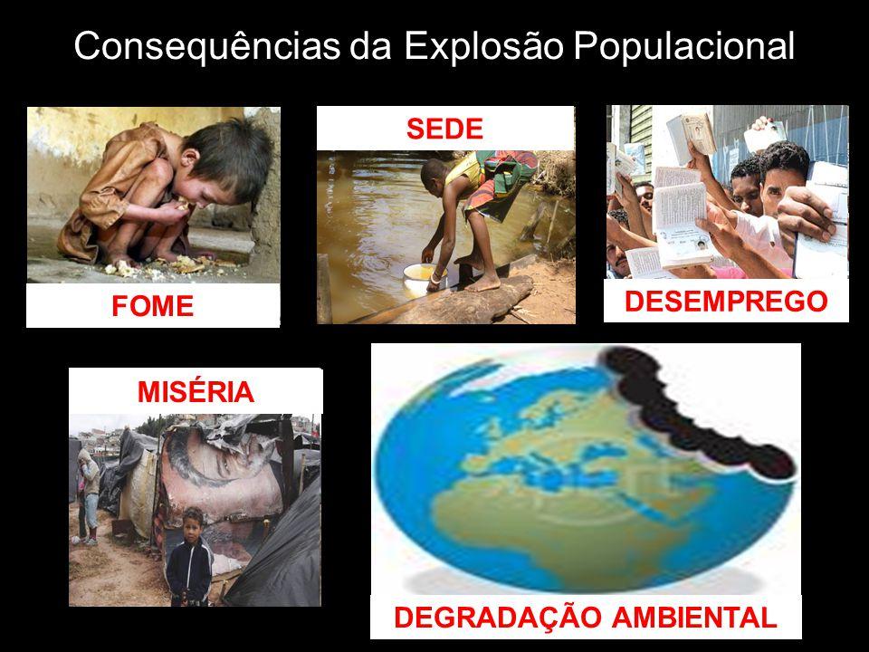 Consequências da Explosão Populacional FOME DESEMPREGO MISÉRIA SEDE DEGRADAÇÃO AMBIENTAL