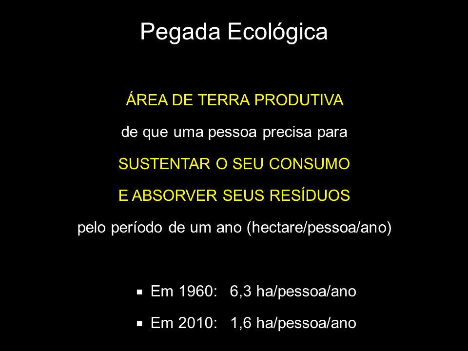 Pegada Ecológica ÁREA DE TERRA PRODUTIVA de que uma pessoa precisa para SUSTENTAR O SEU CONSUMO E ABSORVER SEUS RESÍDUOS pelo período de um ano (hectare/pessoa/ano) Em 1960: 6,3 ha/pessoa/ano Em 2010: 1,6 ha/pessoa/ano