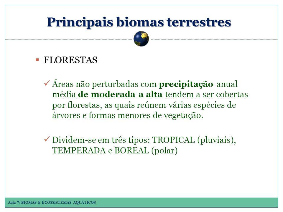 Aula 7: BIOMAS E ECOSSISTEMAS AQUÁTICOS Principais biomas terrestres FLORESTAS Áreas não perturbadas com precipitação anual média de moderada a alta tendem a ser cobertas por florestas, as quais reúnem várias espécies de árvores e formas menores de vegetação.