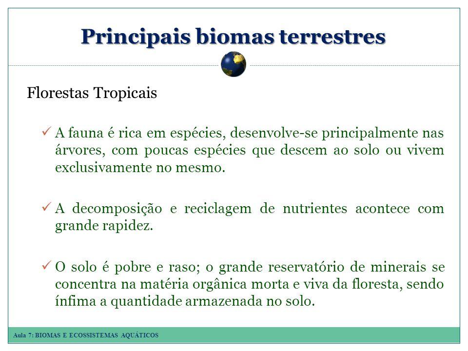 Aula 7: BIOMAS E ECOSSISTEMAS AQUÁTICOS Principais biomas terrestres Florestas Tropicais A fauna é rica em espécies, desenvolve-se principalmente nas árvores, com poucas espécies que descem ao solo ou vivem exclusivamente no mesmo.