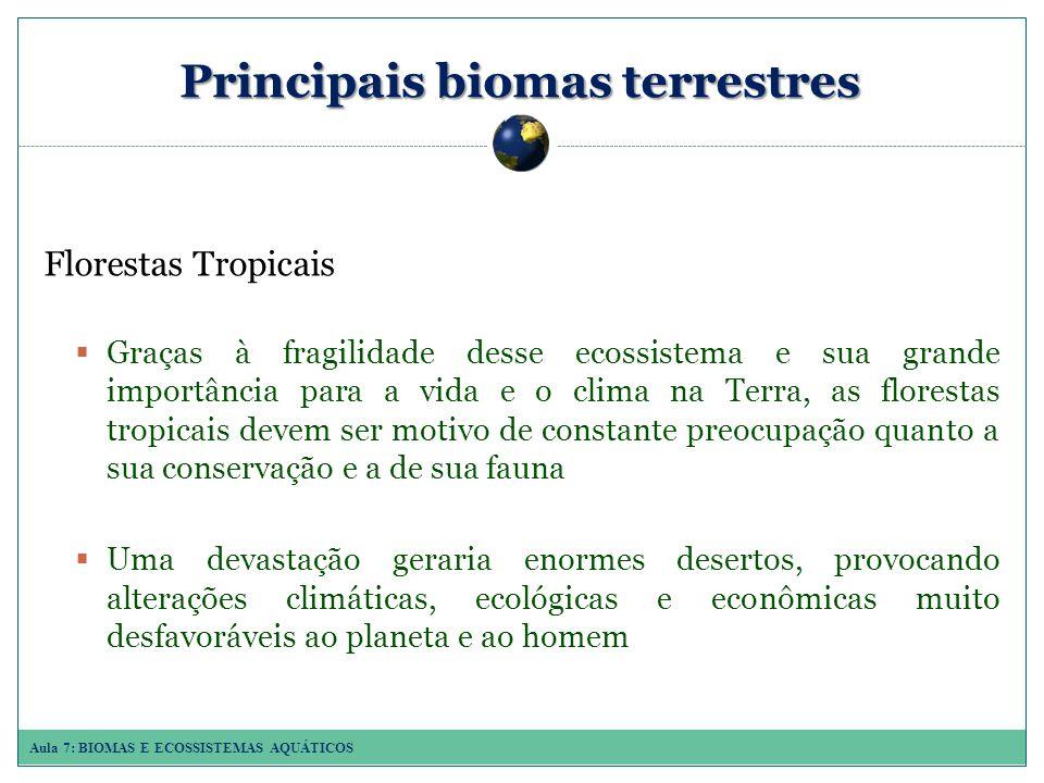 Aula 7: BIOMAS E ECOSSISTEMAS AQUÁTICOS Principais biomas terrestres Florestas Tropicais Graças à fragilidade desse ecossistema e sua grande importância para a vida e o clima na Terra, as florestas tropicais devem ser motivo de constante preocupação quanto a sua conservação e a de sua fauna Uma devastação geraria enormes desertos, provocando alterações climáticas, ecológicas e econômicas muito desfavoráveis ao planeta e ao homem