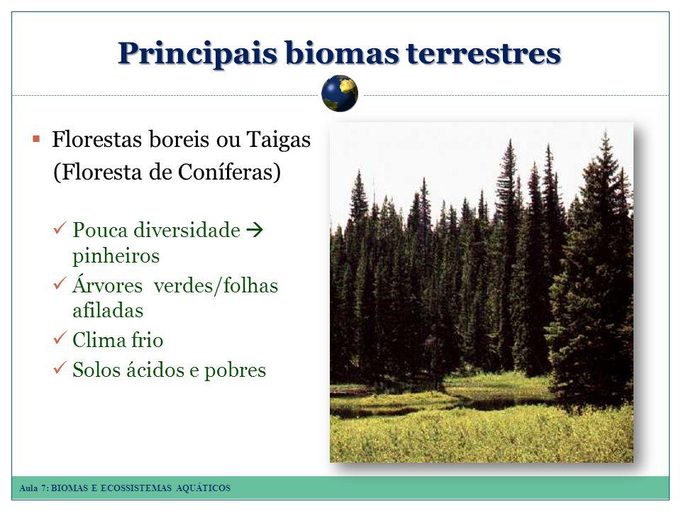 Aula 7: BIOMAS E ECOSSISTEMAS AQUÁTICOS Principais biomas terrestres Florestas boreis ou Taigas (Floresta de Coníferas) Pouca diversidade pinheiros Árvores verdes/folhas afiladas Clima frio Solos ácidos e pobres