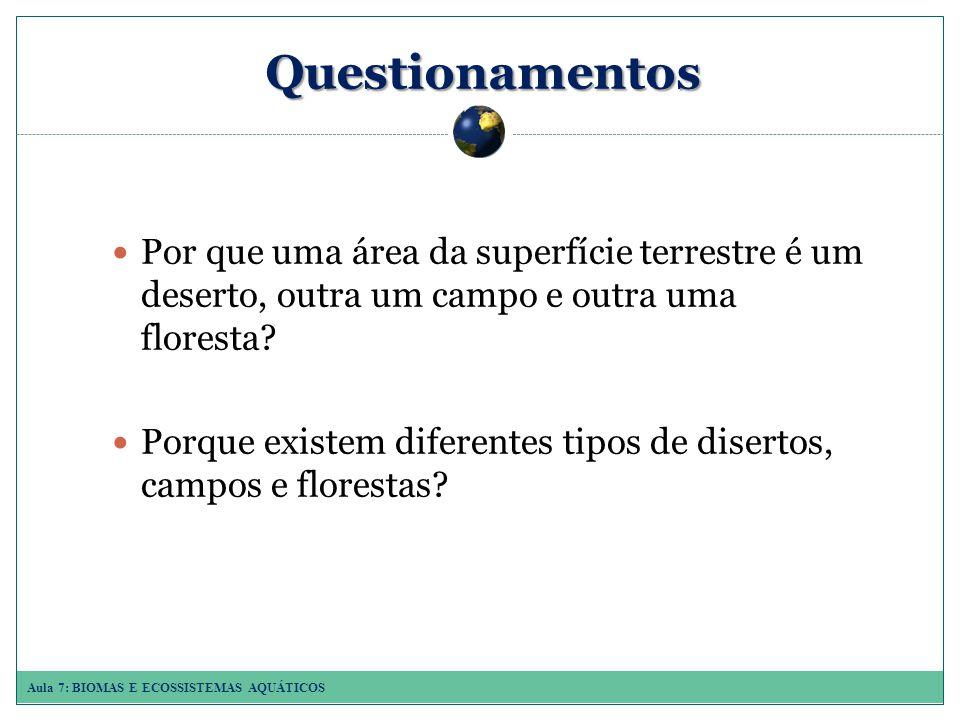 Aula 7: BIOMAS E ECOSSISTEMAS AQUÁTICOS Questionamentos Por que uma área da superfície terrestre é um deserto, outra um campo e outra uma floresta.