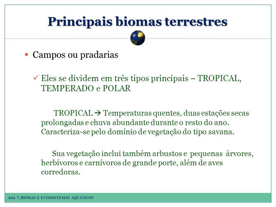 Aula 7: BIOMAS E ECOSSISTEMAS AQUÁTICOS Principais biomas terrestres Campos ou pradarias Eles se dividem em três tipos principais – TROPICAL, TEMPERADO e POLAR TROPICAL Temperaturas quentes, duas estações secas prolongadas e chuva abundante durante o resto do ano.