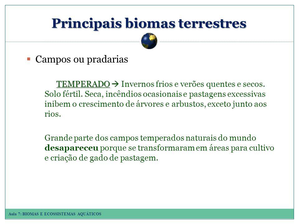 Aula 7: BIOMAS E ECOSSISTEMAS AQUÁTICOS Principais biomas terrestres Campos ou pradarias TEMPERADO TEMPERADO Invernos frios e verões quentes e secos.