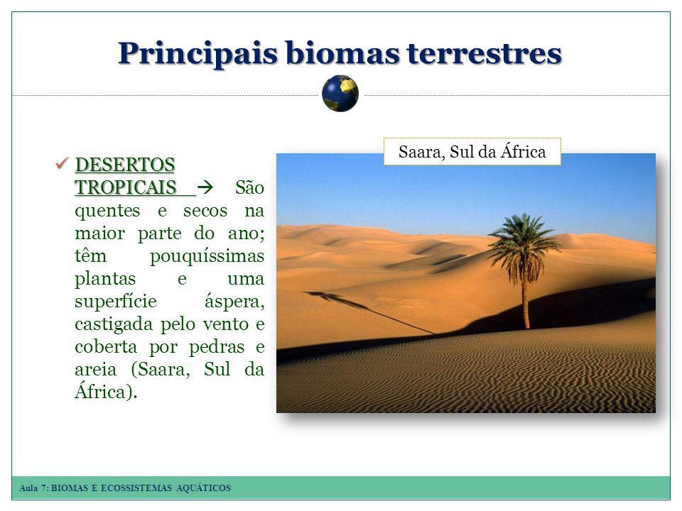 Aula 7: BIOMAS E ECOSSISTEMAS AQUÁTICOS Principais biomas terrestres DESERTOS TROPICAIS DESERTOS TROPICAIS São quentes e secos na maior parte do ano; têm pouquíssimas plantas e uma superfície áspera, castigada pelo vento e coberta por pedras e areia (Saara, Sul da África).