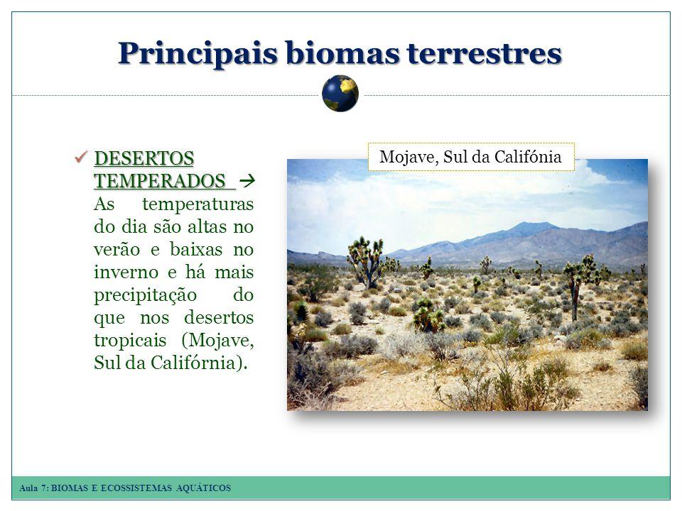 Aula 7: BIOMAS E ECOSSISTEMAS AQUÁTICOS Principais biomas terrestres DESERTOS TEMPERADOS DESERTOS TEMPERADOS As temperaturas do dia são altas no verão e baixas no inverno e há mais precipitação do que nos desertos tropicais (Mojave, Sul da Califórnia).