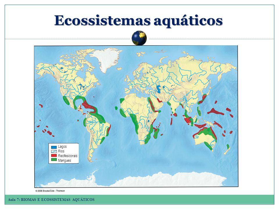 Aula 7: BIOMAS E ECOSSISTEMAS AQUÁTICOS Ecossistemasaquáticos Ecossistemas aquáticos Lagos Rios Recifes/corais Mangues