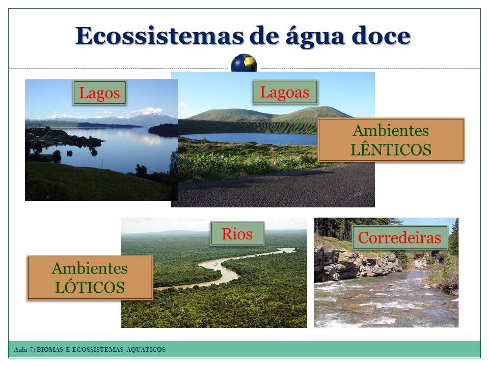 Aula 7: BIOMAS E ECOSSISTEMAS AQUÁTICOS Ecossistemasde água doce Ecossistemas de água doce Rios Corredeiras Ambientes LÓTICOS Ambientes LÊNTICOS Lagos Lagoas